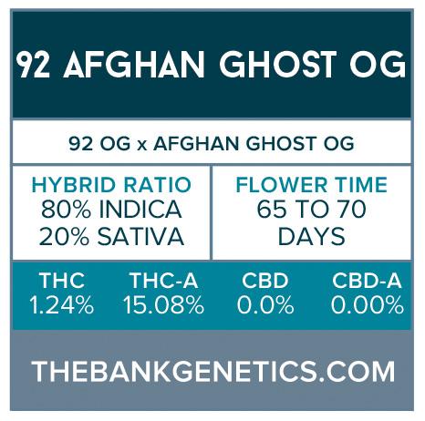 '92 Afghan Ghost OG