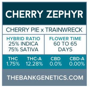 Cherry Zephyr