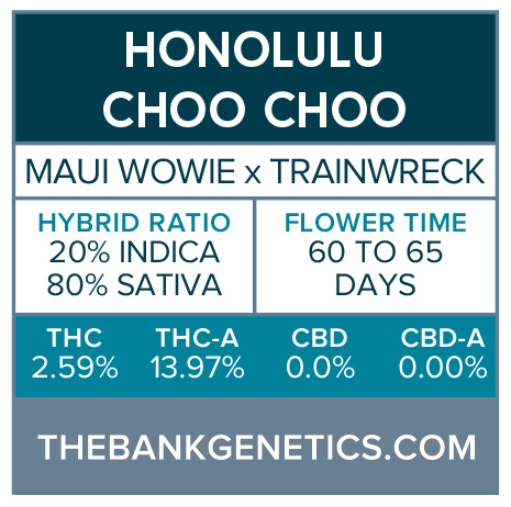 Honolulu Choo Choo