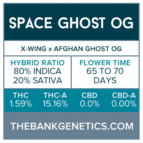 Space Ghost OG