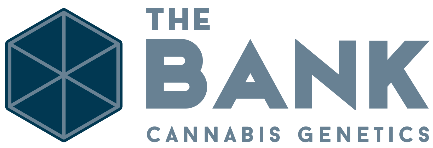The Bank Cannabis Genetics | Marijuana Seeds | Denver, CO